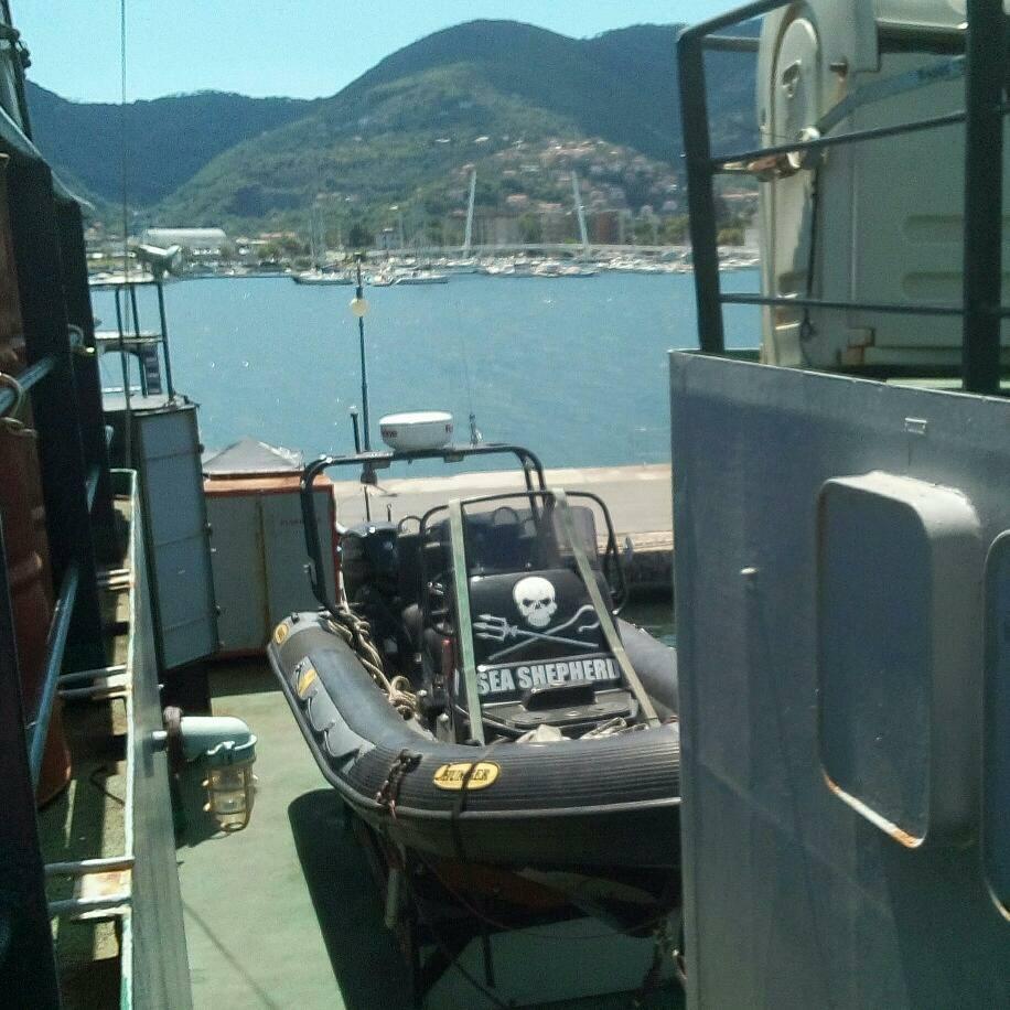 Sea Shepherd, gommone a bordo