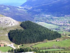 Bosco di Cantabria