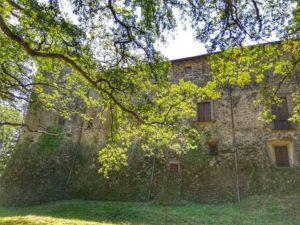 Castello di Monti di Licciana, il castello visto dal bosco di lecci