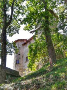 Castello di Monti di Licciana, il castello visto dal bosco