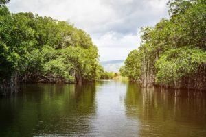 Giamaica cosa vedere, Black River
