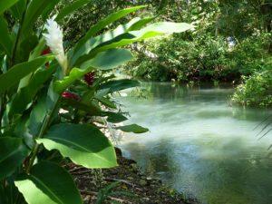 Giamaica, fiume