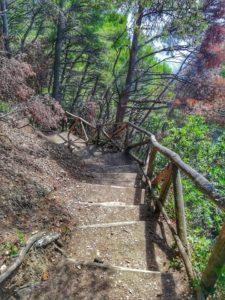 Punta corvo, scorcio sentiero