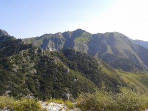 Parco Regionale delle Alpi Apuane , scorcio