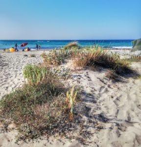 Uno scorcio della spiaggia di Punta Penna Grande