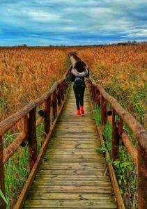 Oasi Lipu Massaciccoli, passeggiando su uno dei camminamenti
