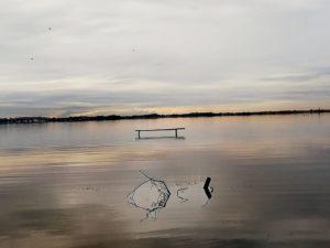 Oasi Lipu Massaciuccoli, il lago