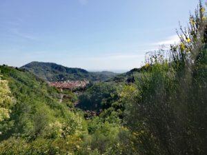 Vista su Carrara