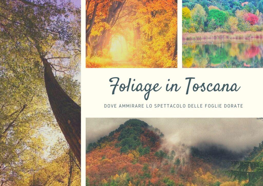 Foliage in Toscana copertina articolo