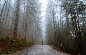 Trekking lockdown, camminatore solitario