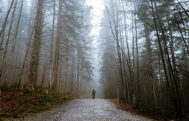 Trekking in lockdown, uomo solitario su sentiero