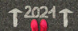 Bilancio 2020 e speranze 2021 de Il Mio Mondo Libero