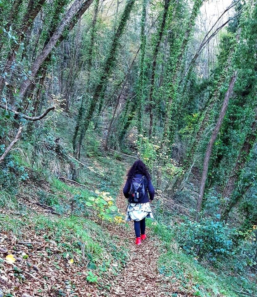 Meditazione camminata, donna che cammina sola in un bosco