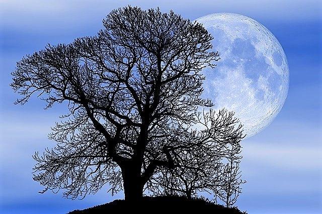 La Luna piena di Agosto detta anche Luna Blu